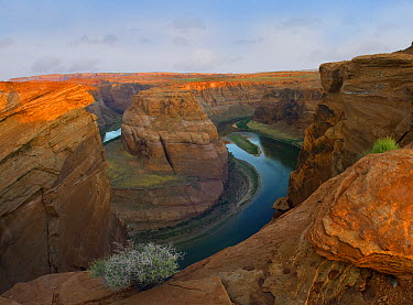 Colorado River at Horseshoe Bend near Page, Arizona  -  Tim Fitzharris