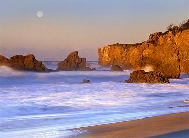 Seastacks and full moon at El Matador Beach, California  -  Tim Fitzharris