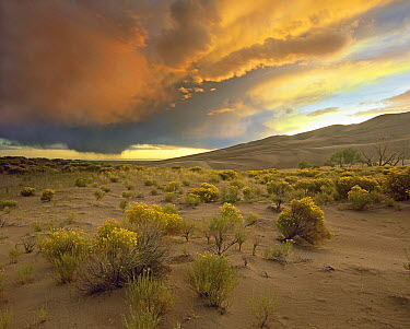 Storm clouds over Great Sand Dunes National Monument, Colorado  -  Tim Fitzharris