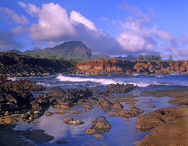 Rocky shore and cliffs at Shipwreck Beach, south shore of Kauai, Hawaii  -  Tim Fitzharris
