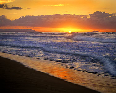 Sunset over Polihale Beach, Kauai, Hawaii  -  Tim Fitzharris