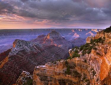 Stormy skies over Vishnu Temple, Grand Canyon National Park, Arizona  -  Tim Fitzharris