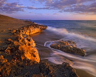 Beach at dusk, Blowing Rocks Preserve, Florida  -  Tim Fitzharris