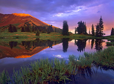 Mount Baldy at sunset reflected in lake along Paradise Divide, Colorado  -  Tim Fitzharris