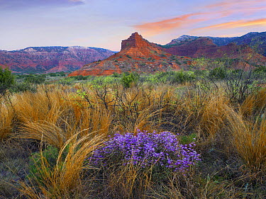 Caprock Canyons State Park, Texas  -  Tim Fitzharris
