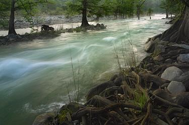 River in Pedernales Falls State Park, Texas  -  Tim Fitzharris