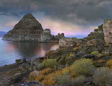 Pyramid Lake, Nevada  -  Tim Fitzharris