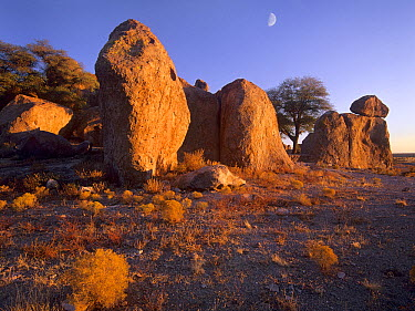 Moon over City of Rocks State Park, New Mexico  -  Tim Fitzharris