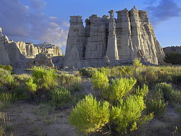 Plaza Blanca near Abiquiu, New Mexico  -  Tim Fitzharris