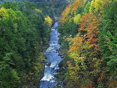 Ottauquechee River and Quechee Gorge, Vermont  -  Tim Fitzharris