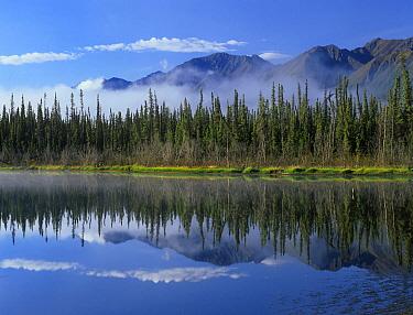 Lake reflecting mountain range and forest, Kluane National Park, Yukon, Canada  -  Tim Fitzharris