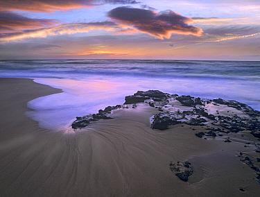 Sandy beach, Oahu, Hawaii  -  Tim Fitzharris