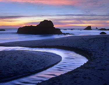 Creek flowing into ocean at Harris Beach State Park, Oregon  -  Tim Fitzharris