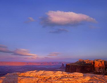 Grand View Point at dusk, Canyonlands National Park, Utah  -  Tim Fitzharris