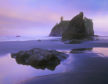 Ruby Beach with seastacks and boulders, Olympic National Park, Washington  -  Tim Fitzharris