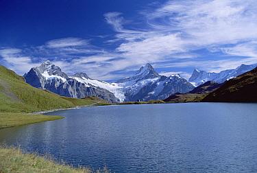 Mt Wetterhorn and Mt Schreckhorn, Alps, Bernese Oberland region, Switzerland  -  Konrad Wothe