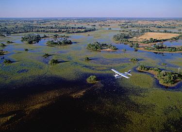 Safari airplane flying over the flooded Okavango Delta, Botswana  -  Konrad Wothe