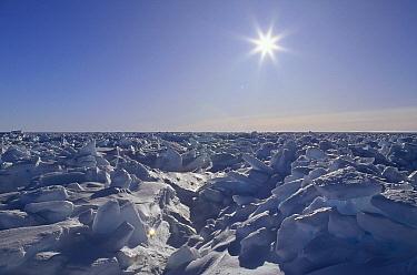 Sun shining over icefield, Antarctica  -  Konrad Wothe