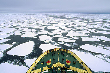 Tourists on Russian icebreaker breaking through pack ice, Antarctica  -  Konrad Wothe
