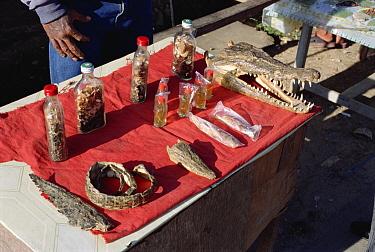 Traditional medicines at market, Irian Jaya, New Guinea, Indonesia  -  Konrad Wothe