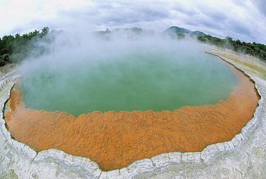Champagne pool, Waiotapu Thermal Wonderland, North Island, New Zealand  -  Konrad Wothe