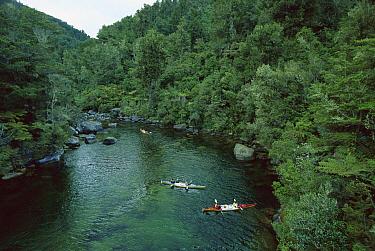 Kayakers on river, Abel Tasman National Park, South Island, New Zealand  -  Konrad Wothe