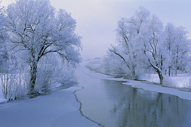 Loisach River covered with a dusting of fresh snow, Lake Kochel, Upper Bavaria, Germany  -  Konrad Wothe