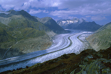 Aletsch Glacier moving through the Swiss Alps showing lateral and medial moraines, Wallis, Switzerland  -  Konrad Wothe
