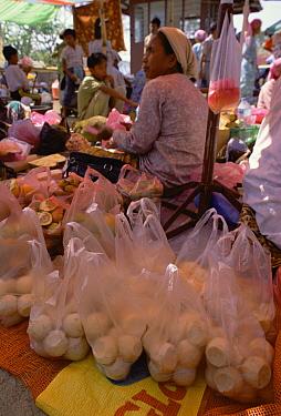 Green Sea Turtle (Chelonia mydas) poached eggs being sold in market, Sabah, Borneo  -  Gerry Ellis