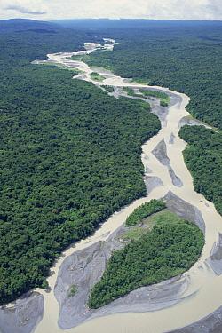 Aerial view of braided river channel through rainforest, Lake Kutubu region, Papua New Guinea  -  Gerry Ellis