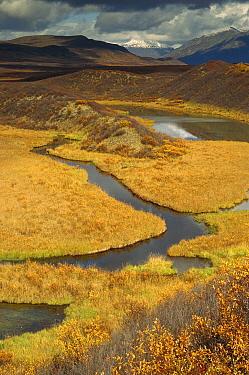 Eskers in tundra, Alaska Ranges Bureau of Land Management, Alaska  -  Gerry Ellis