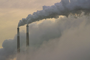Gas effluence pouring out of smoke stacks at nuclear power plant, upper Ohio River, Ohio  -  Gerry Ellis