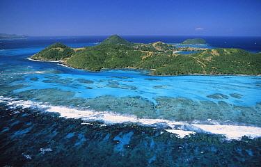 Canouan Island, Grenadine Archipelago, Lesser Antilles, Caribbean  -  Gerry Ellis
