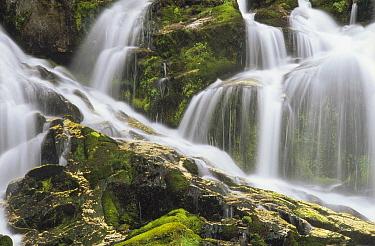 Falls on north fork Sauk River, Mt Baker, Snoqualmie National Forest, Washington  -  Gerry Ellis