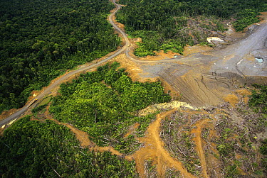 Logging erosion in lowland tropical rainforest across the broad flood plain of Aird River, Kikori Basin, Papua New Guinea  -  Gerry Ellis