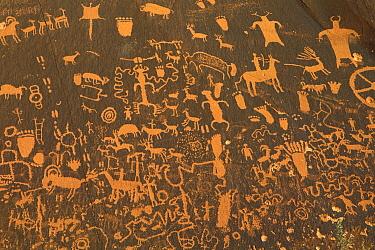 Fremont petroglyphs, Newspaper Rock State Park, Utah  -  Gerry Ellis