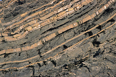 Folding and uplift along Laurentian Divide, St Lawrence Seaway, Quebec, Canada  -  Gerry Ellis