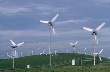 Windmill farm near San Francisco using propellers and generators as an alternative energy source, California  -  Gerry Ellis
