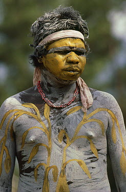 Tribesman of the Wanum people wearing traditional costume and body paint for the Corroboree festival, Turkey Creek, Western Australia  -  Gerry Ellis