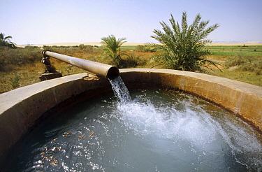 Water pump leading to viaduct in oasis, Oasis Dakhia, Sahara Desert, Egypt  -  Gerry Ellis