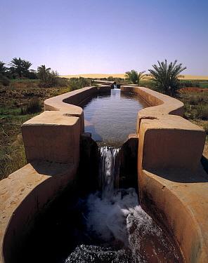 Water pump and viaduct in oasis, Oasis Dakhia, Sahara Desert, Egypt  -  Gerry Ellis