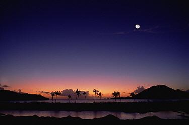 Mosquito Cove at dusk, Antigua, Caribbean  -  Gerry Ellis