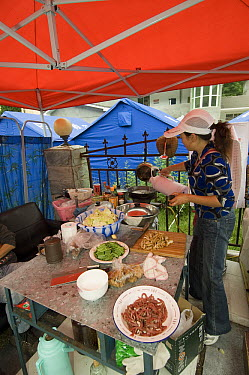 Food preparation tent in temporary compound after the May 12, 2008 earthquake and landslides, CCRCGP, Wolong, China  -  Katherine Feng
