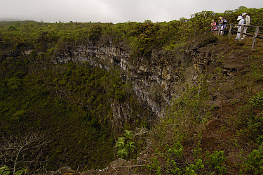 Los Gemelos or The Twins are two craters in the highlands of Santa Cruz Island, Galapagos Islands, Ecuador  -  Pete Oxford