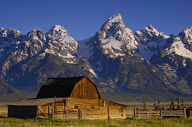 Cunningham Cabin in front of Grand Teton Range, Wyoming  -  Pete Oxford