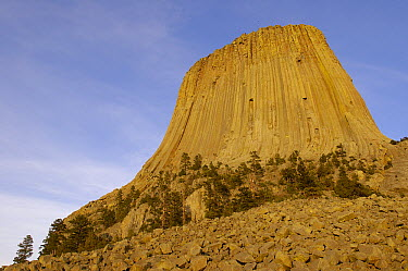 Devil's Tower National Monument, Wyoming  -  Pete Oxford