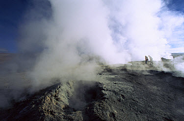 Fumaroles at 4850 meters, altiplano region, Sol de Manana, southwestern Bolivia  -  Pete Oxford