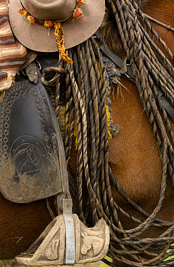 Close up detail of a chagra or cowboy's hat with Mountain roses in the band, lasso, and decoratively carved wooden stirrup, Hacienda Yanahurco, Andes Mountains, Ecuador  -  Pete Oxford