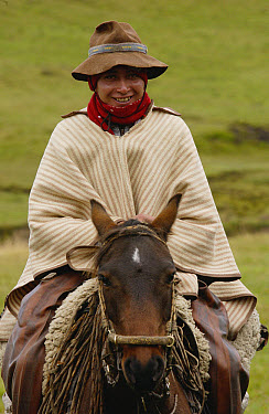 Chagra cowboy on horseback at a hacienda during the annual overnight cattle round-up, Andes Mountains, Ecuador  -  Pete Oxford