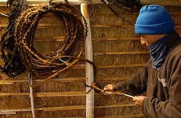 Chagra cowboy braiding a lasso at a hacienda in the Andes Mountains during the annual cattle round-up, Ecuador  -  Pete Oxford